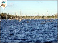 karelia2005-22.jpg