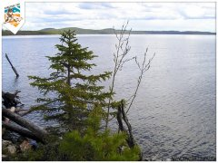 karelia2006-7.jpg